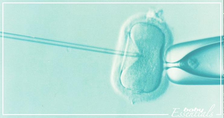 reproducción asistida inyección intracitoplasmática de espermatozoides (ICSI)